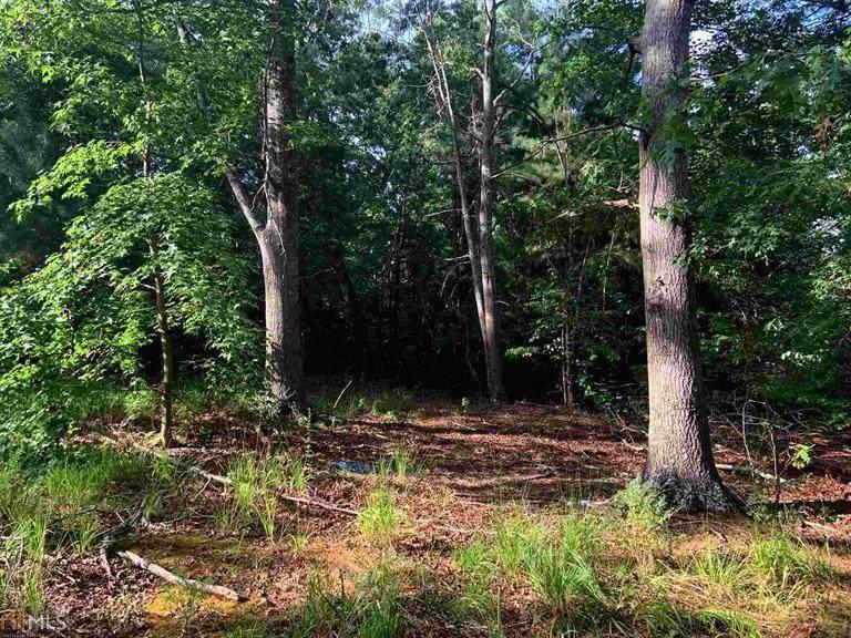 6257 Lollis Creek Road - Photo 1