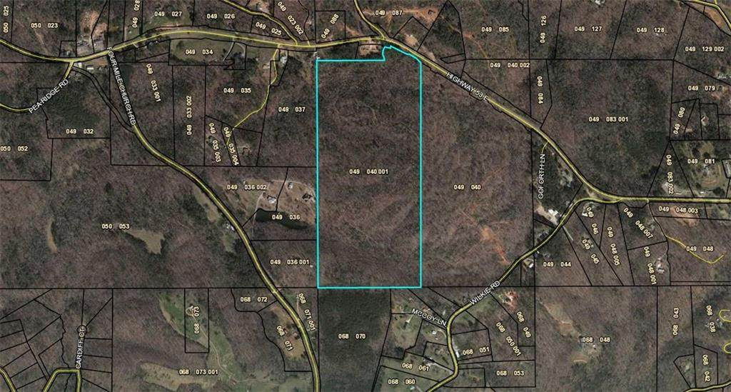 79Acre Hwy 53 - Photo 1