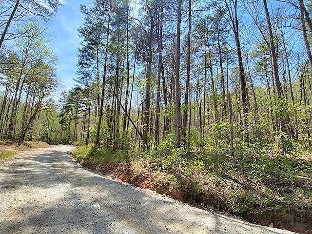 01 Lawrence Road, Dahlonega, GA 30533 (MLS #6896664) :: Charlie Ballard Real Estate