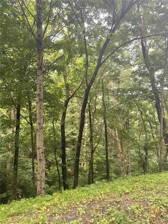 0 Price Creek Road - Photo 1