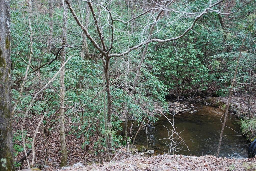 154 Council Oak Loop - Photo 1