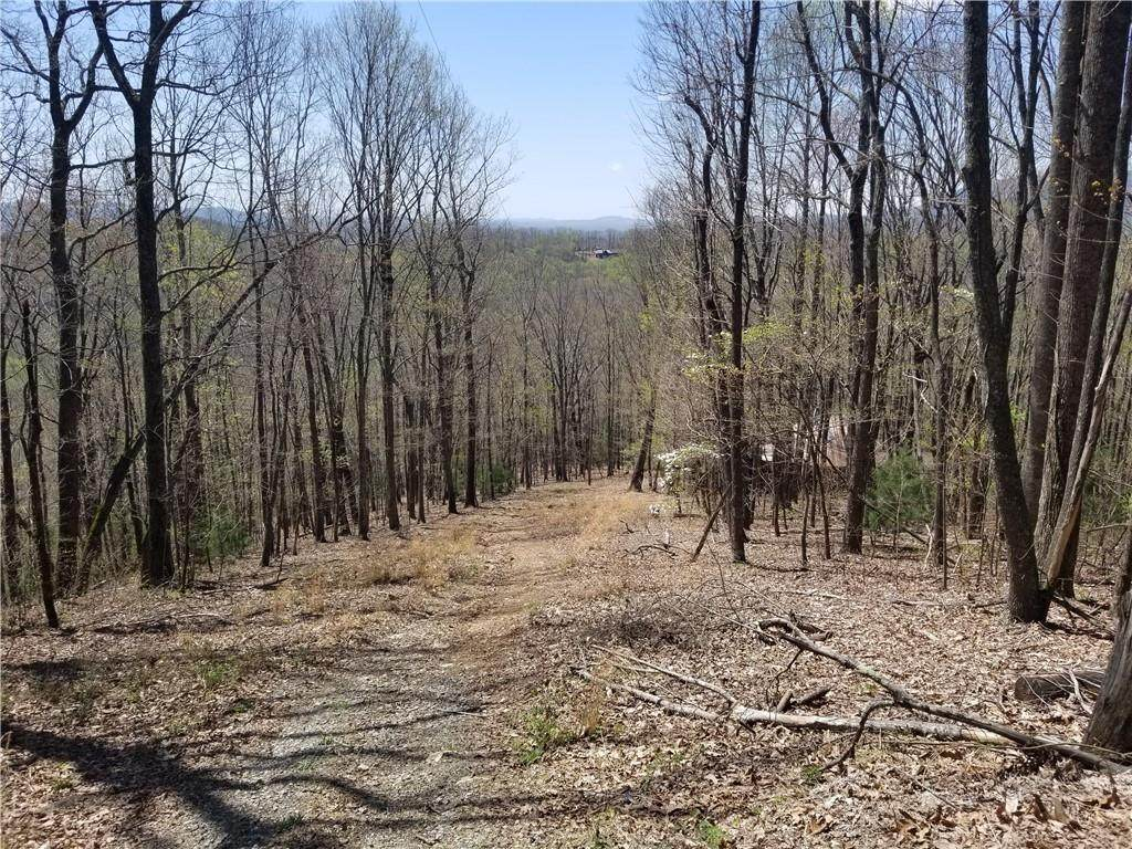 0 Stover Creek Rd Road - Photo 1