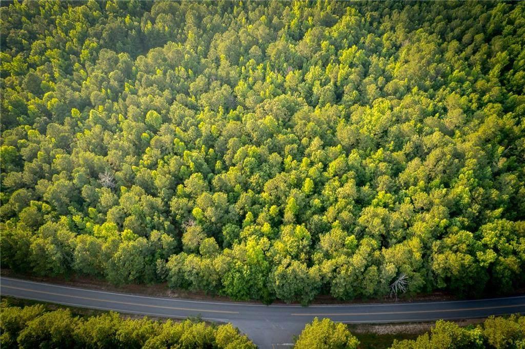 4240 Georgia Highway 186 - Photo 1
