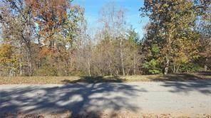 1030 Bear Paw Ridge, Dahlonega, GA 30533 (MLS #6917810) :: North Atlanta Home Team