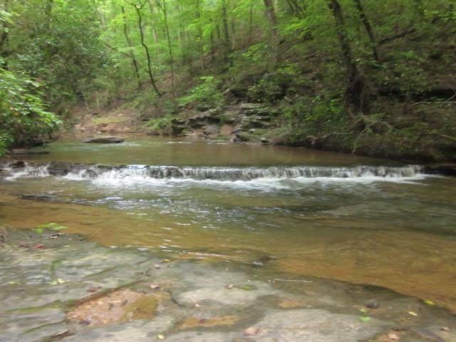 00 N Hidden Creek Rd, Jasper, GA 30143 (MLS #6922190) :: Path & Post Real Estate