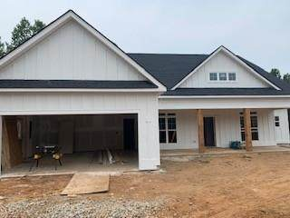 70 Observation Way, Dallas, GA 30132 (MLS #6923059) :: Charlie Ballard Real Estate