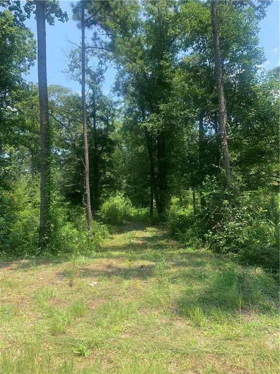 1464 N Walkers Mill Road, Griffin, GA 30223 (MLS #6923456) :: North Atlanta Home Team