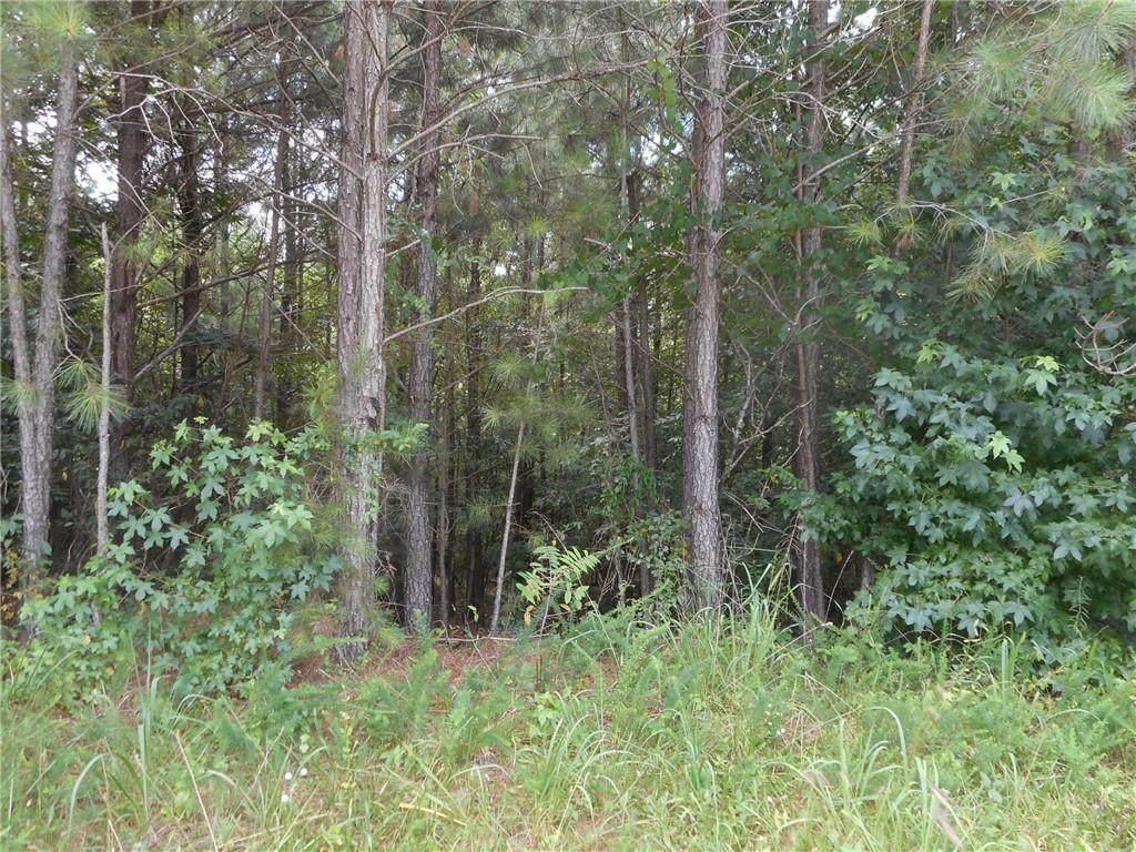 9035 Keaton Creek Drive - Photo 1