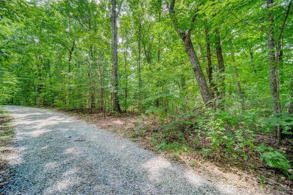 Lot 12 Amicalola Woods - Photo 1