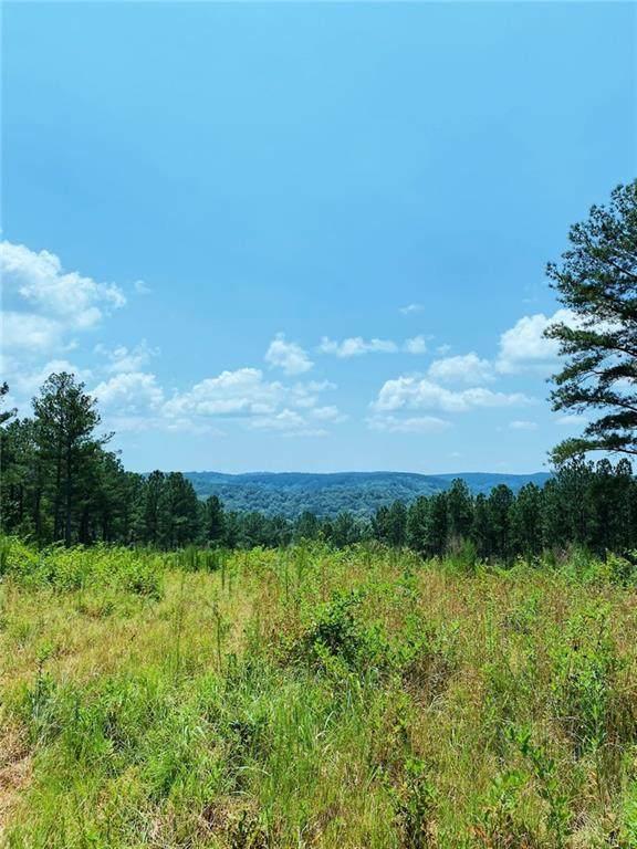 0000 Big Ridge Road - Photo 1