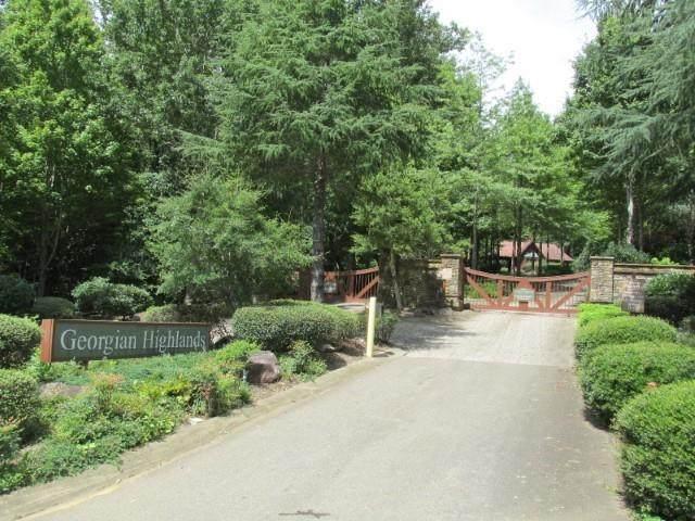 0 Cloudland Drive, Ellijay, GA 30536 (MLS #6939624) :: RE/MAX Paramount Properties