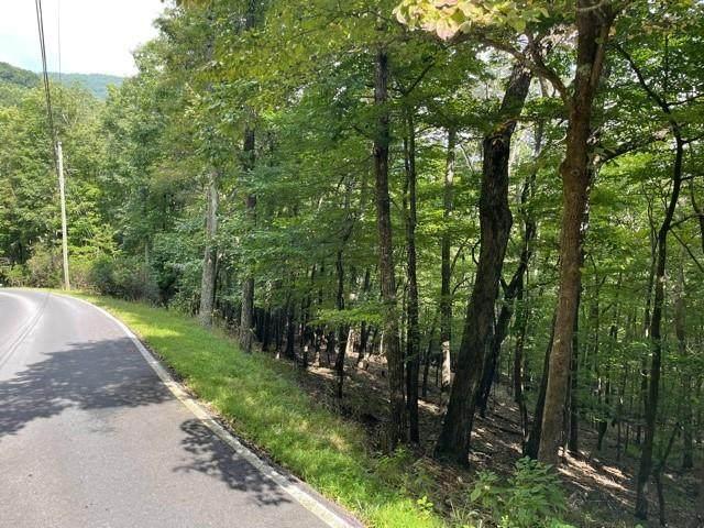 Lot866 Little Hendricks Mountain Road - Photo 1