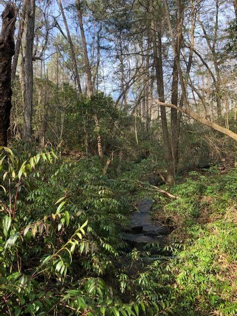 0 Pioneer Ridge Tract 1, Clarkesville, GA 30523 (MLS #6942894) :: Path & Post Real Estate
