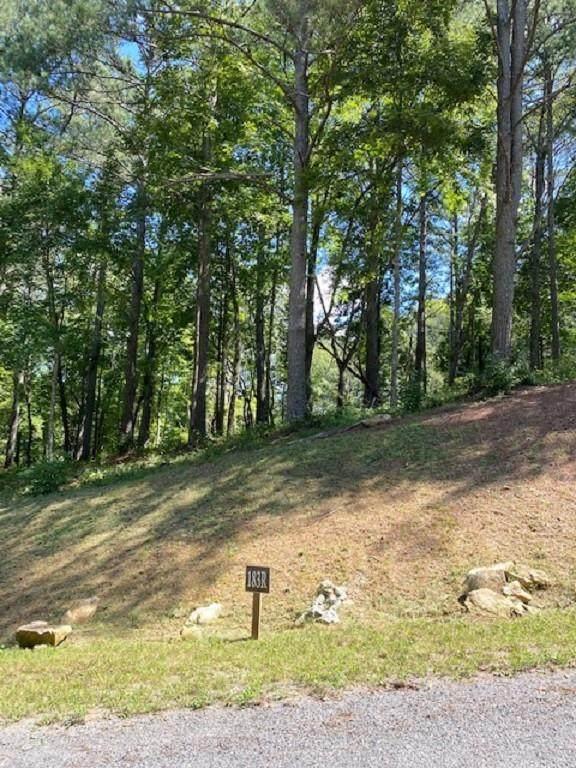 0 Pinnacle Drive, Ellijay, GA 30540 (MLS #6943669) :: Evolve Property Group