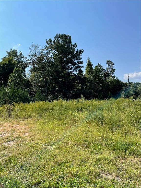 2056 Holly Court, Cumming, GA 30041 (MLS #6945244) :: The Cole Realty Group