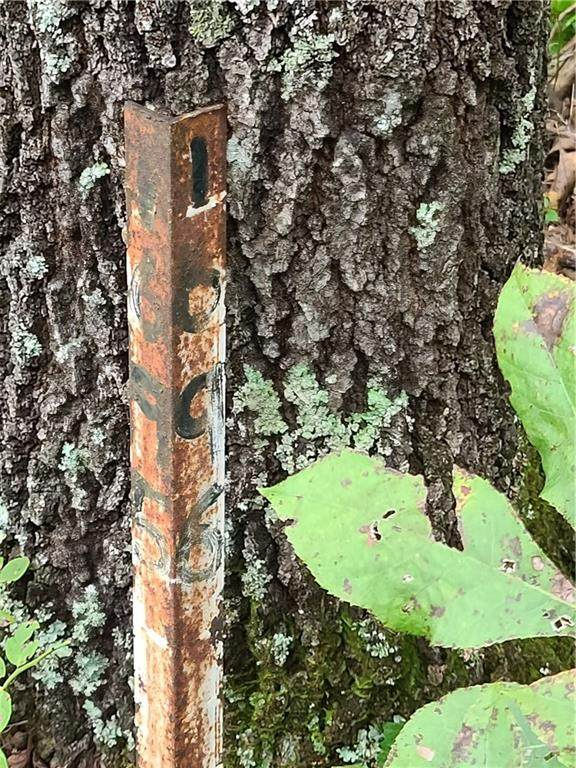 1696 Shade Tree Drive, Talking Rock, GA 30175 (MLS #6947409) :: North Atlanta Home Team