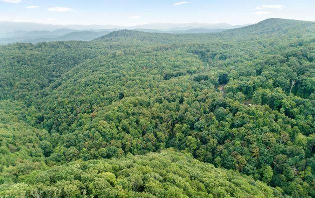 232 Andes Ridge, Ellijay, GA 30540 (MLS #6948835) :: Path & Post Real Estate