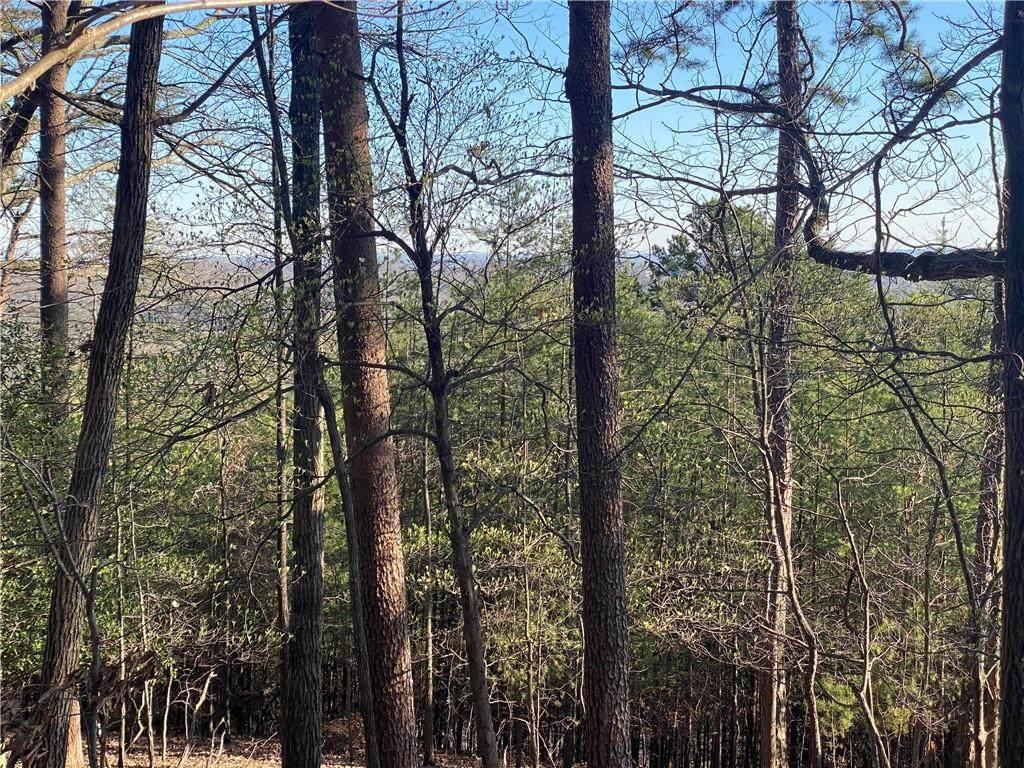 2 Crown Mountain Ridge - Photo 1