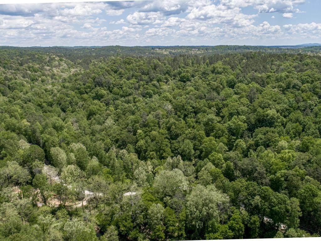 1475 Cherokee Gold Trail - Photo 1