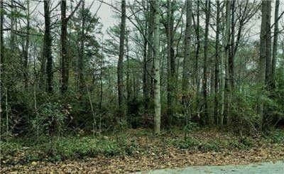 1618 Whisperwood Trail, Stone Mountain, GA 30088 (MLS #6956662) :: North Atlanta Home Team