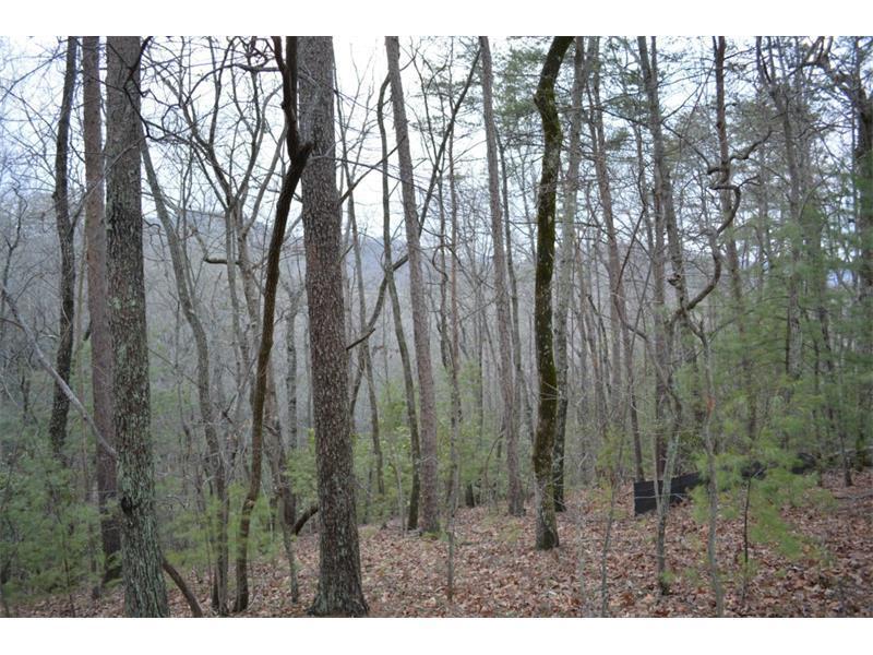 3590 Blazingstar Trail, Big Canoe, GA 30143 (MLS #5502747) :: North Atlanta Home Team