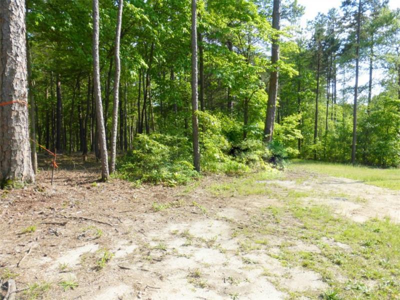0 Paynes Creek  Lot 10 Road, Hartwell, GA 30643 (MLS #5533844) :: North Atlanta Home Team