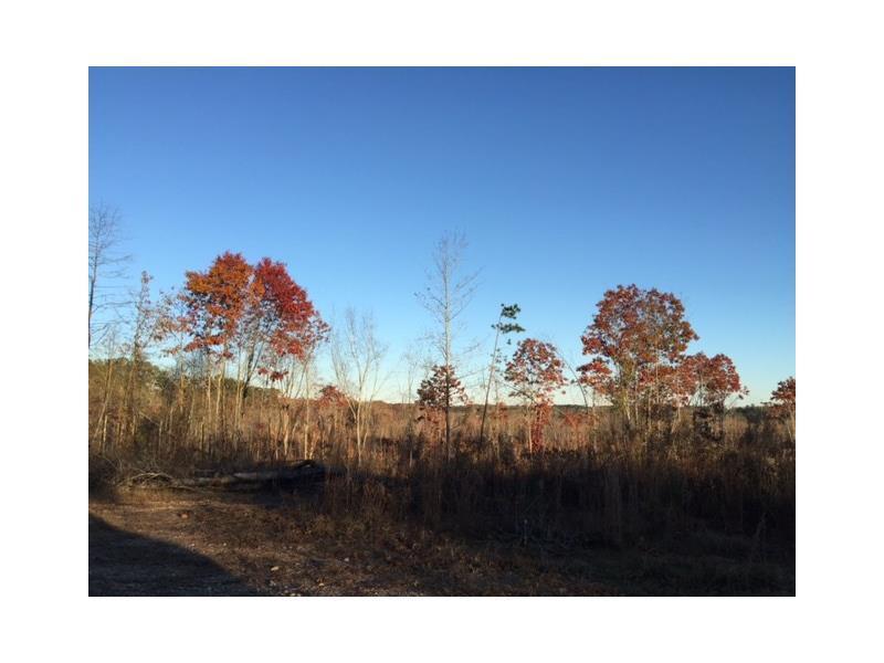 0 Coppermine Road, Buchanan, GA 30113 (MLS #5621888) :: North Atlanta Home Team