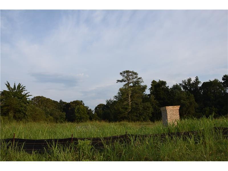 1890 Webb Gin House Road, Snellville, GA 30078 (MLS #5726278) :: North Atlanta Home Team