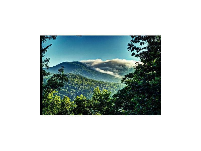 694 Bent Laurel Ridge Road, Clayton, GA 30525 (MLS #5749164) :: North Atlanta Home Team