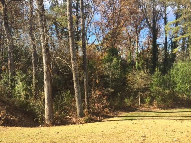 0 N Cliff Valley Way, Brookhaven, GA 30319 (MLS #5787672) :: KELLY+CO