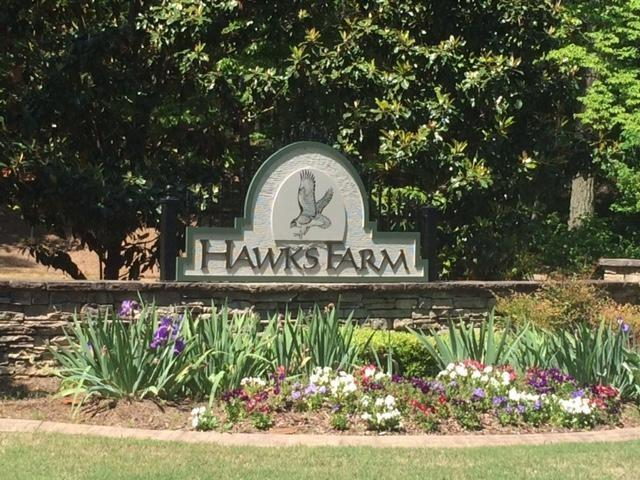29 Hawks Farm Road, White, GA 30184 (MLS #5815139) :: RE/MAX Paramount Properties