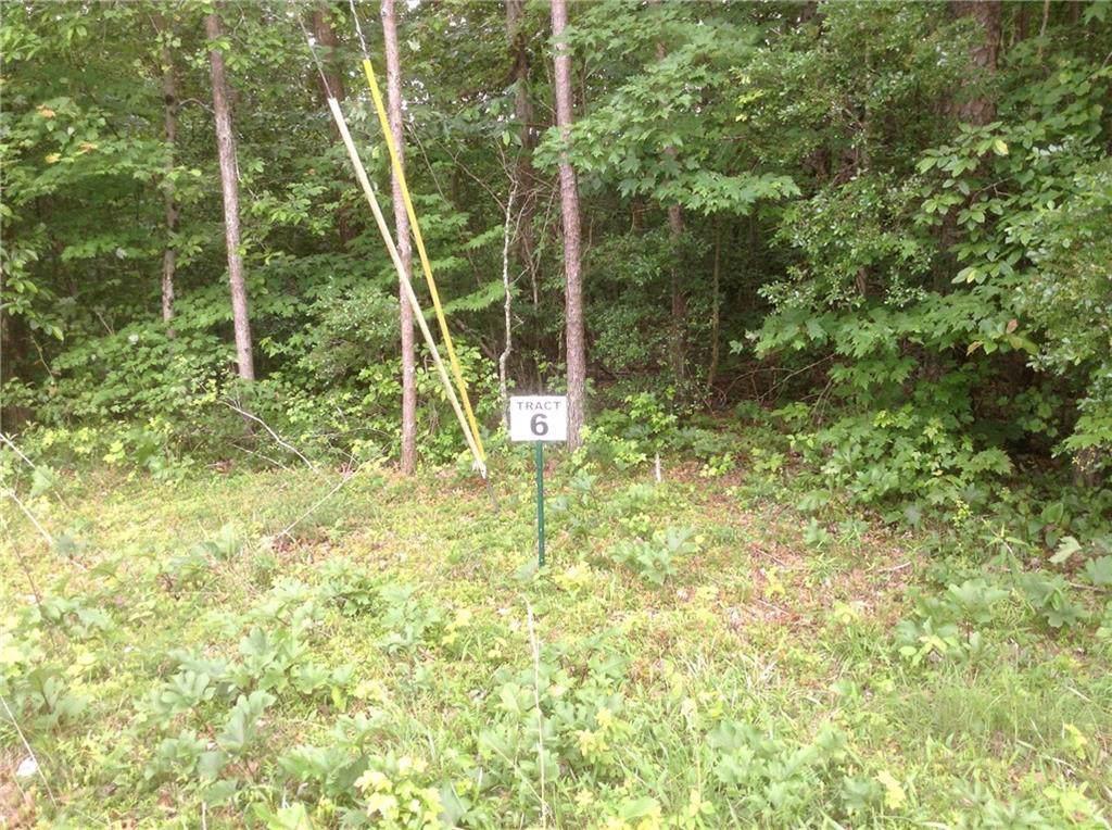 TR 6 Ivy Terrace - Photo 1