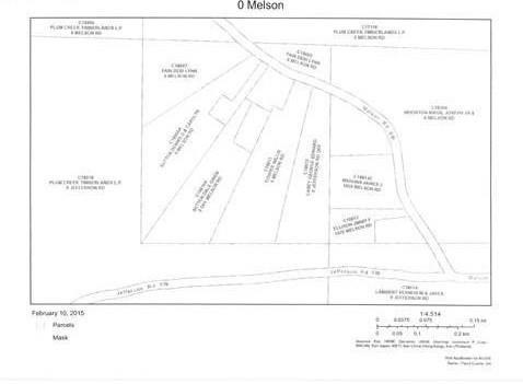 0 Melson Road, Cave Spring, GA 30124 (MLS #5924840) :: Carr Real Estate Experts