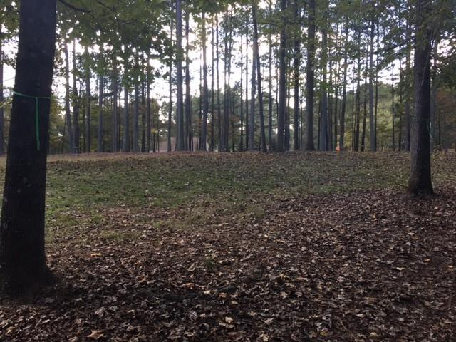 Lot 1 Hammock Lane, Milton, GA 30004 (MLS #5926486) :: RE/MAX Paramount Properties
