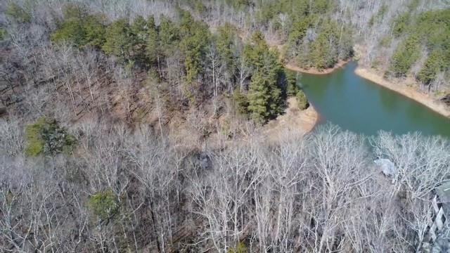 Lot 3 Chestatee View Drive, Dawsonville, GA 30534 (MLS #5958525) :: Iconic Living Real Estate Professionals