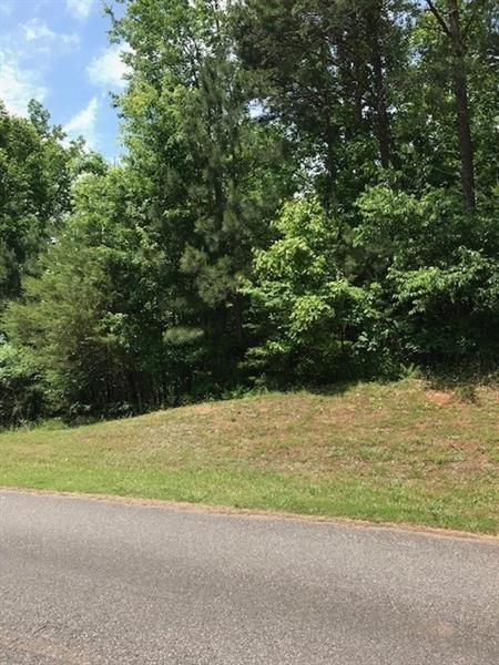 1075 Cowart Mountain Trail, Waleska, GA 30183 (MLS #6013647) :: North Atlanta Home Team
