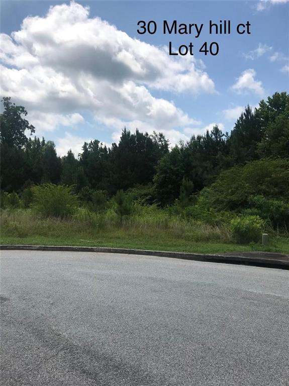 30 Mary Hill Court, Douglasville, GA 30134 (MLS #6043680) :: The Zac Team @ RE/MAX Metro Atlanta