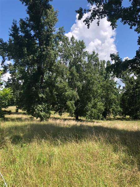 3840 Mason Creek Road, Winston, GA 30187 (MLS #6053292) :: Path & Post Real Estate