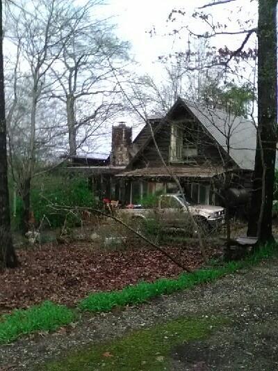 706 Lake Drive, Morganton, GA 30560 (MLS #6056754) :: Iconic Living Real Estate Professionals