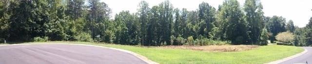 730 Hawks Ridge Drive, Ball Ground, GA 30107 (MLS #6057118) :: RCM Brokers