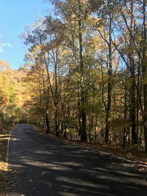 4464 Denny Ridge Road - Photo 1