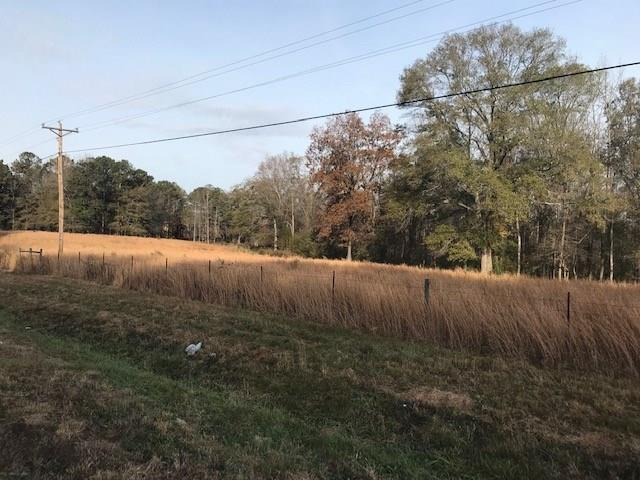 02 Lower Jersey Rd, Covington, GA 30014 (MLS #6101837) :: Hollingsworth & Company Real Estate
