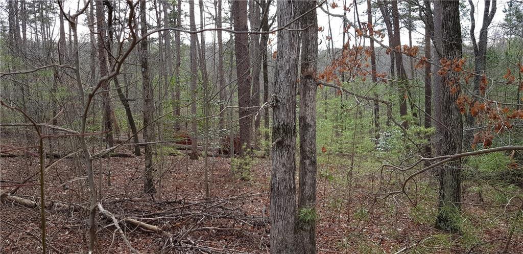 9 Bear Creek Drive - Photo 1