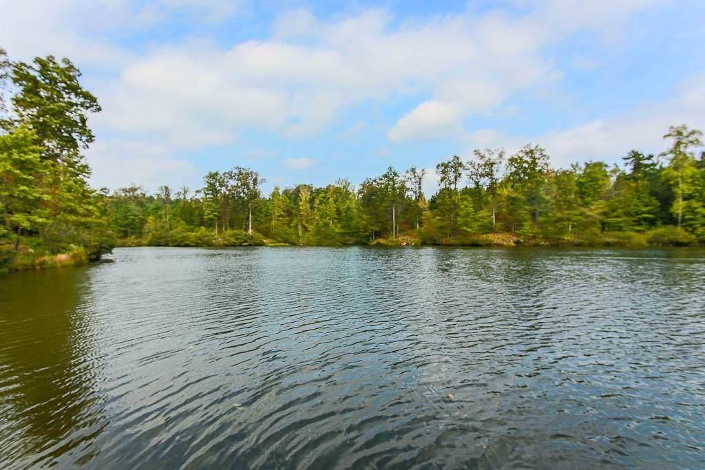 101 Lake Kenelle Path - Photo 1