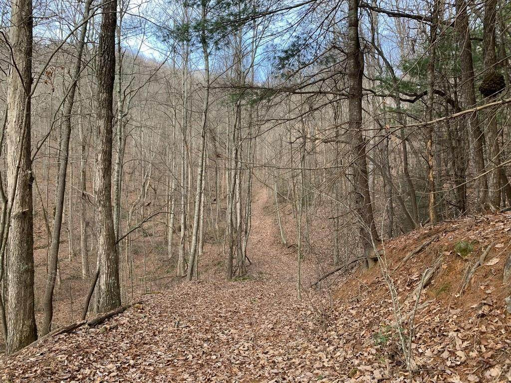 0 Paramount Trail - Photo 1