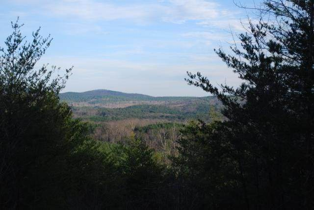 1000 Cowart Mountain Trail - Photo 1
