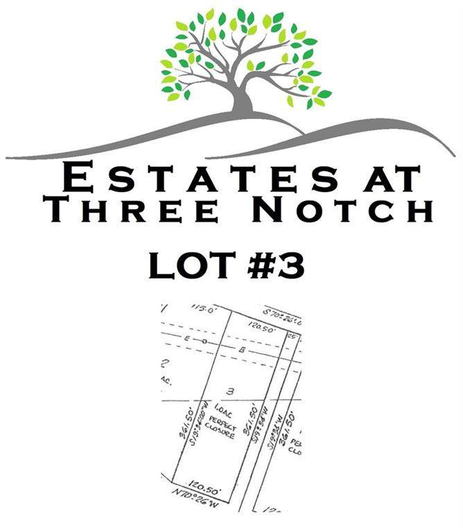 7017 Three Notch Road - Photo 1