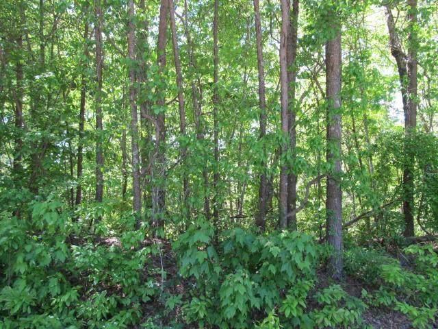 5724 Ridgewater Drive, Gainesville, GA 30506 (MLS #6715395) :: Path & Post Real Estate