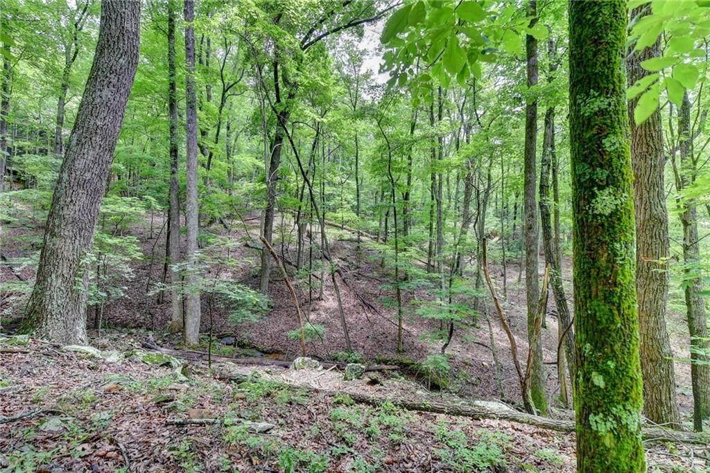 0 Hickory Trail - Photo 1