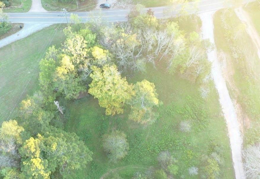 697 Newt Green Road - Photo 1